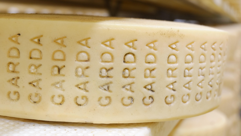 Dettaglio formaggio